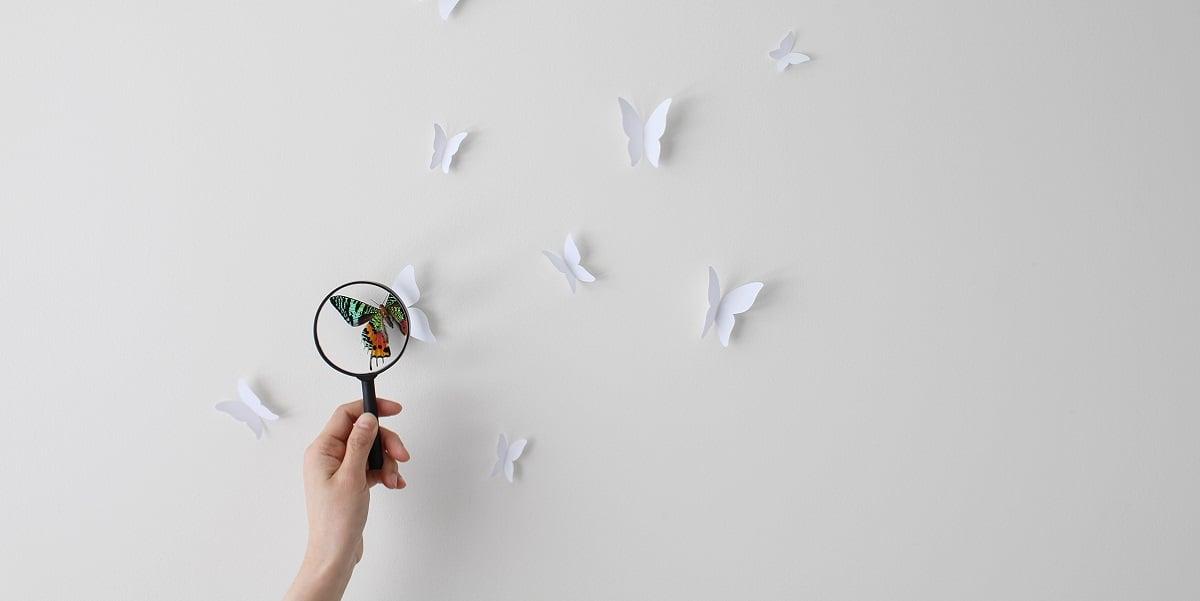 Butterfly_paper_1200x601